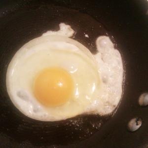 Onion Egg